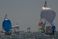 http://www.sailfd.it/wp-content/uploads/2013/12/Scarlino-2013-D1.jpg